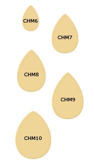 CHM6-10_187.jpg
