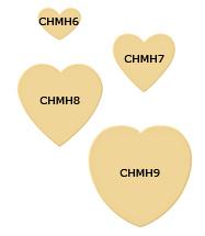 CHMH6-9_187.jpg